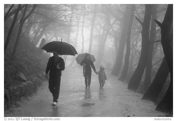 Family walking on path in the rain, Seokguram. Gyeongju, South Korea