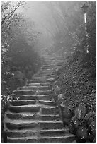 Stairs leading to grotto, Seokguram. Gyeongju, South Korea ( black and white)