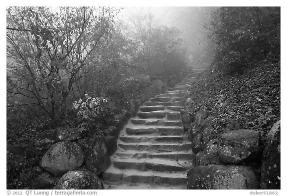 black and white picture photo stone stairs in fog seokguram gyeongju south korea. Black Bedroom Furniture Sets. Home Design Ideas
