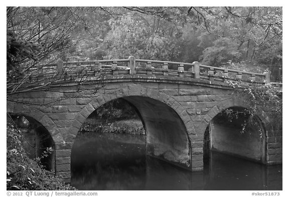 Stone bridge and fall colors, Bulguk-sa. Gyeongju, South Korea (black and white)