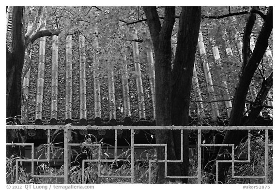 Fence with Buddhist symbol, and roof with fallen leaves, Bulguksa. Gyeongju, South Korea (black and white)