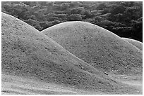 Pictures of Tumulus