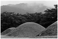 Barrows and misty mountains, Mt Namsan. Gyeongju, South Korea (black and white)