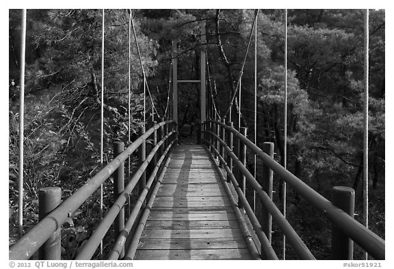 Suspension bridge, Namsan Mountain. Gyeongju, South Korea (black and white)