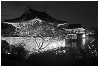 Donggung pavilions at night. Gyeongju, South Korea (black and white)