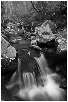 Cascading stream, Hallasan National Park. Jeju Island, South Korea ( black and white)