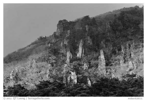 Last light on pinnacles. Jeju Island, South Korea (black and white)