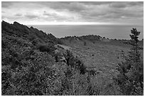 View over crater and ocean,  Seongsang Ilchulbong. Jeju Island, South Korea ( black and white)