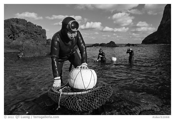 Haeneyo women with fresh catch, Seongsang Ilchulbong. Jeju Island, South Korea (black and white)