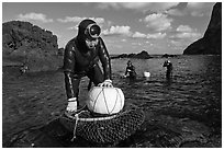 Haeneyo women with fresh catch, Seongsang Ilchulbong. Jeju Island, South Korea ( black and white)
