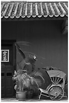 Trishaw, door, and roofing, Cheong Fatt Tze Mansion. George Town, Penang, Malaysia (black and white)