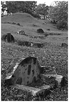 Chinese graves on hillside, Bukit China cemetery. Malacca City, Malaysia (black and white)