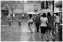 Women walking under unbrella during downpour. Singapore ( black and white)