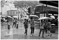 Women cross street of shopping area during shower. Singapore ( black and white)
