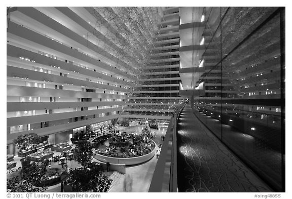 Black And White Picture Photo Inside Marina Bay Sands