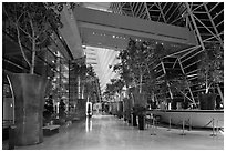 Potted trees, Marina Bay Sands hotel lobby. Singapore ( black and white)