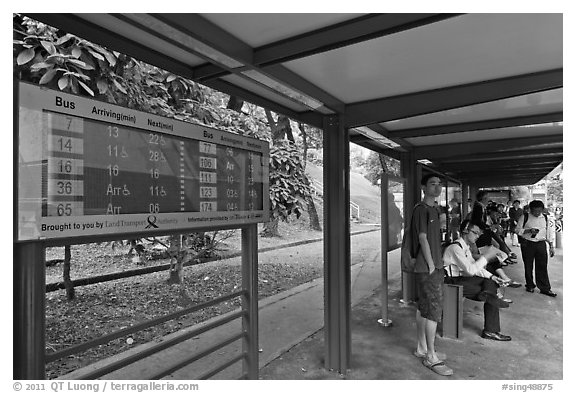 Bus stop with displays with expected wait time. Singapore (black and white)