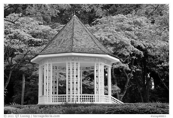 The Bandstand, Singapore Botanical Gardens. Singapore (black and white)