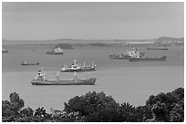 Large cargo ships, Singapore Strait. Singapore (black and white)