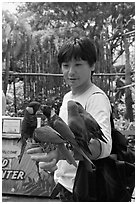 Man holding many parakeets on arm, Sentosa Island. Singapore (black and white)