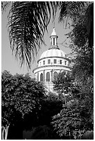 Cathedral dome seen from the park, Tlaquepaque. Jalisco, Mexico (black and white)