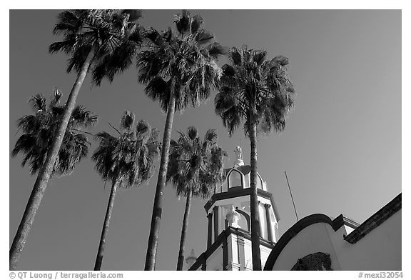 Church and palm trees, Tlaquepaque. Jalisco, Mexico (black and white)
