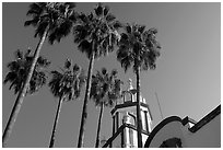 Church and palm trees, Tlaquepaque. Jalisco, Mexico ( black and white)