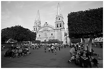 Plaza de los Laureles, planted with laurels, and Cathedral. Guadalajara, Jalisco, Mexico ( black and white)