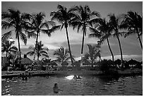 Palm-tree fringed swimming pool at sunset, Nuevo Vallarta, Nayarit. Jalisco, Mexico (black and white)