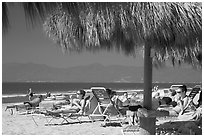 People lying on beach chairs, Nuevo Vallarta, Nayarit. Jalisco, Mexico ( black and white)