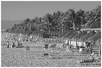Beach front with sun shades and palm trees, Nuevo Vallarta, Nayarit. Jalisco, Mexico (black and white)