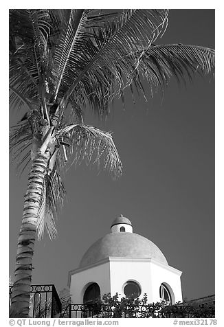 Palm tree and  blue dome, Puerto Vallarta, Jalisco. Jalisco, Mexico (black and white)
