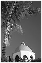 Palm tree and  blue dome, Puerto Vallarta, Jalisco. Jalisco, Mexico ( black and white)