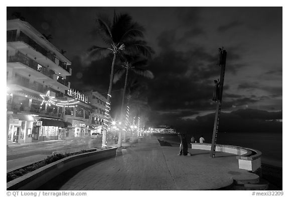 Palm trees and sculpture on Malecon at night, Puerto Vallarta, Jalisco. Jalisco, Mexico (black and white)