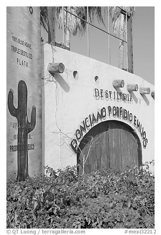 Tequila distillery, Puerto Vallarta, Jalisco. Jalisco, Mexico (black and white)