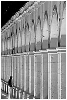 Columns of Poseda de la Moneda by night. Zacatecas, Mexico ( black and white)