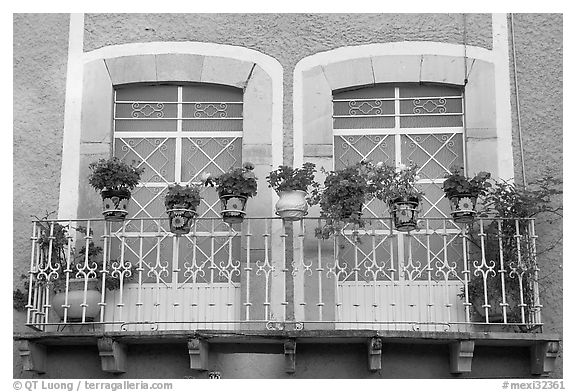 Balcony with potted flowers. Guanajuato, Mexico (black and white)