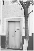 Door and tree. Guanajuato, Mexico (black and white)