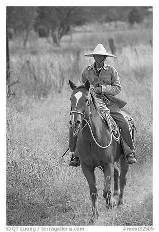 Man riding a horse. Mexico (black and white)