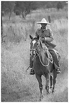 Man riding a horse. Mexico ( black and white)