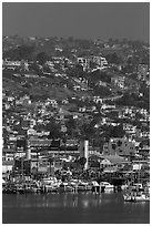 Harbor and hillside houses, Ensenada. Baja California, Mexico (black and white)