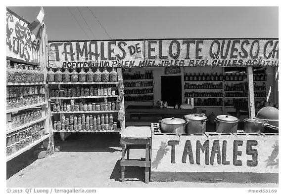 Roadside tamales stand. Baja California, Mexico (black and white)