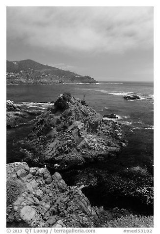 Bay, rocks, and kelp, La Bufadora. Baja California, Mexico (black and white)