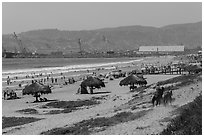 Beach with shade palapas and horseman, Ensenada. Baja California, Mexico (black and white)