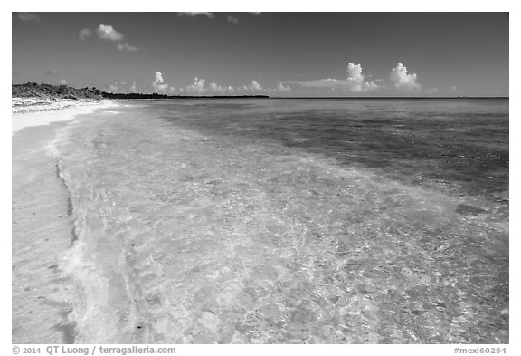 Beach with clear water. Cozumel Island, Mexico (black and white)