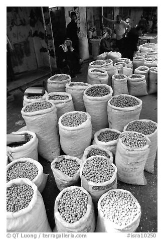 Freshly picked olives for sale, Hebron. West Bank, Occupied Territories (Israel) (black and white)