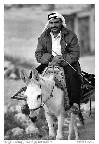 Arab man riding a donkey, Hebron. West Bank, Occupied Territories (Israel) (black and white)