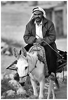 Arab man riding a donkey, Hebron. West Bank, Occupied Territories (Israel) ( black and white)