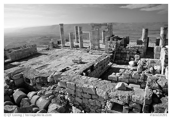 Ruins of the Nabatean Acropolis sitting on a hill, Avdat. Negev Desert, Israel (black and white)