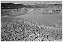 Cracked mud and shallow pond, near Mitzpe Ramon. Negev Desert, Israel ( black and white)